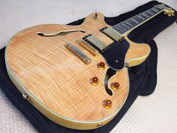 Washburn ワッシュバーン  HB-35NK セミアコースティックギター